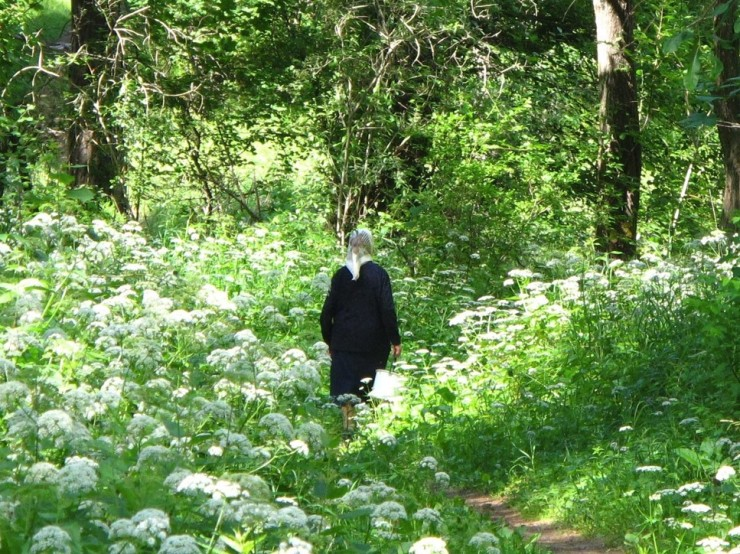 Old Woman in Forest Salakas (2)