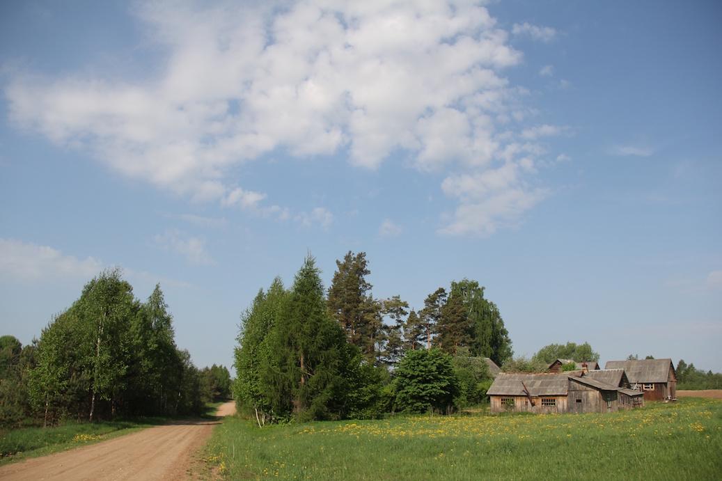 img_8066-borovaja-1